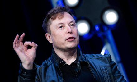"Elon Musk slams ""fascist"" social distancing measures in rant about Tesla production"