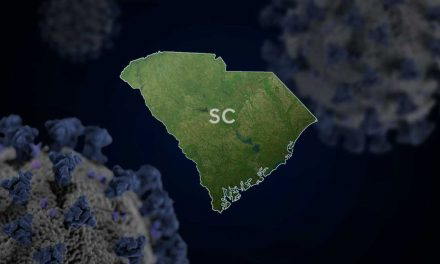 COVID-19 cases increase by 141 in South Carolina, 8 new deaths reported
