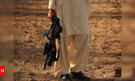 Hizbul Mujahideen's Punjab terror-funding module busted